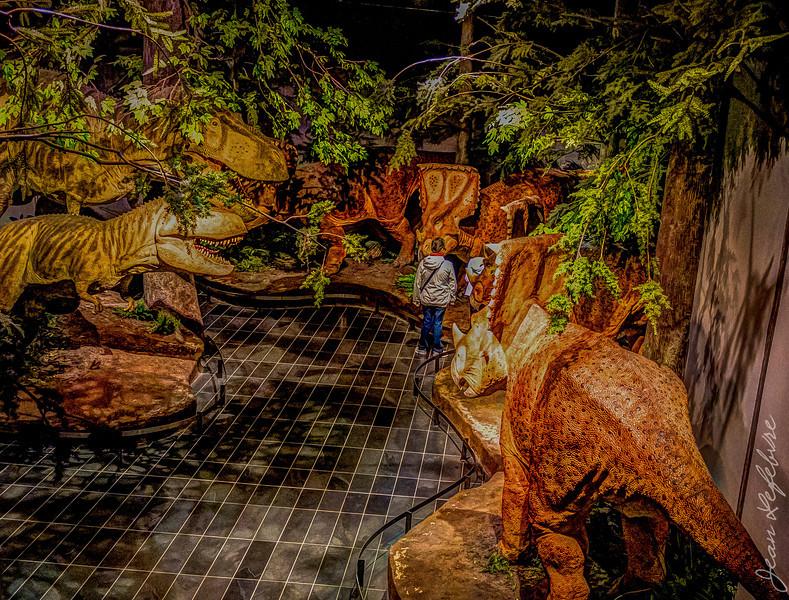 Museum of Nature dinosaur exhibit