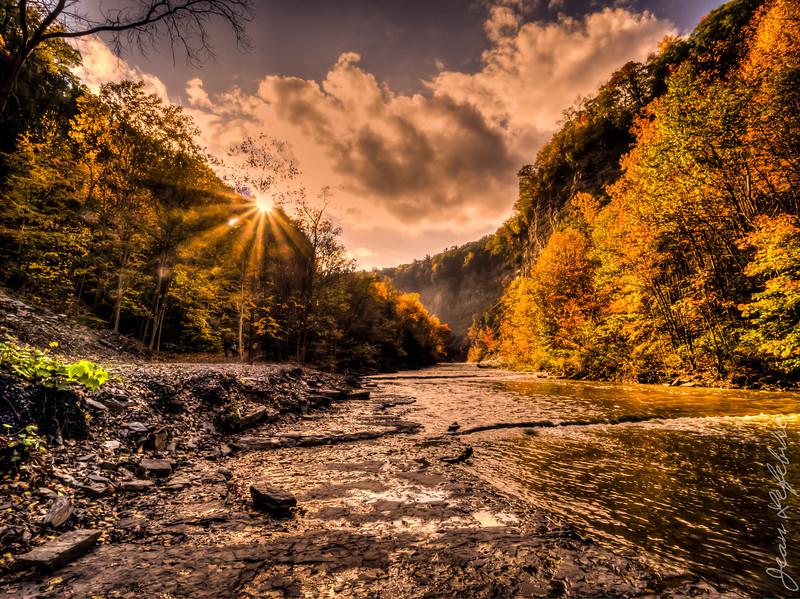 Nature scene in Finger Lakes