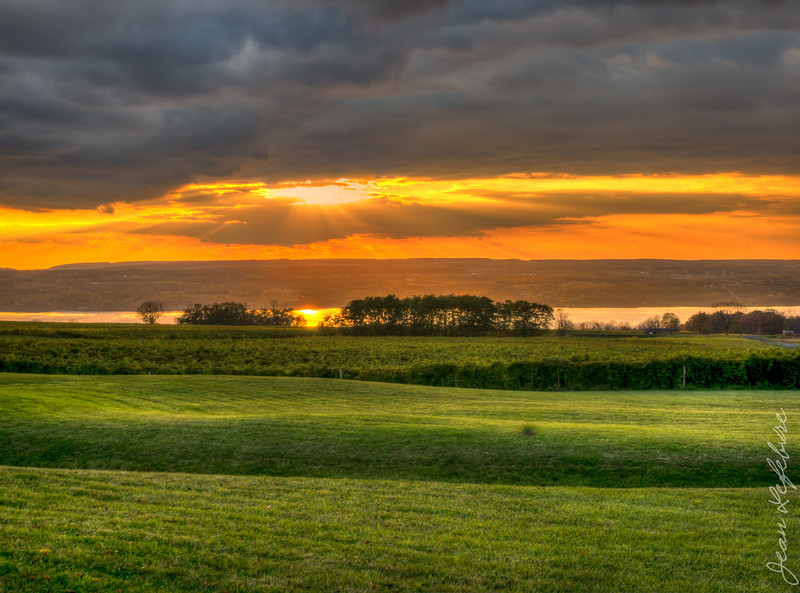 Countryside in Finger Lakes